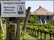 organic winery and vineyard terms