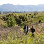 Easy hiking Alston Park in Napa