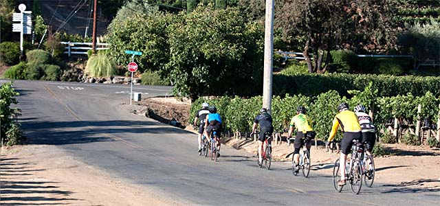Riding bikes along Lambert Bridge Road in the Dry Creek Valley