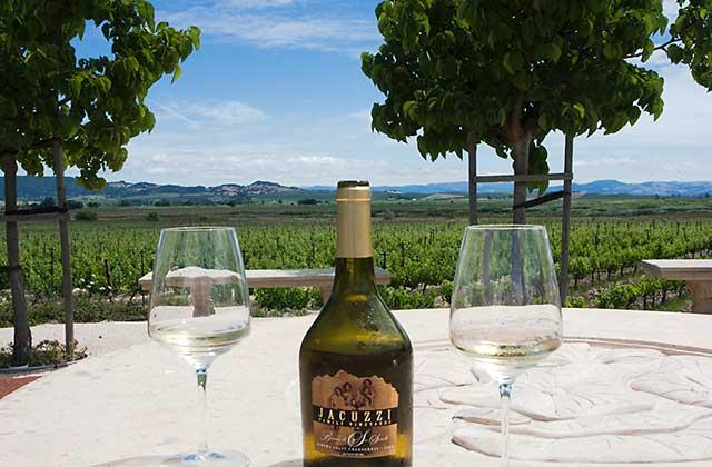 Carneros quick wine country getaway