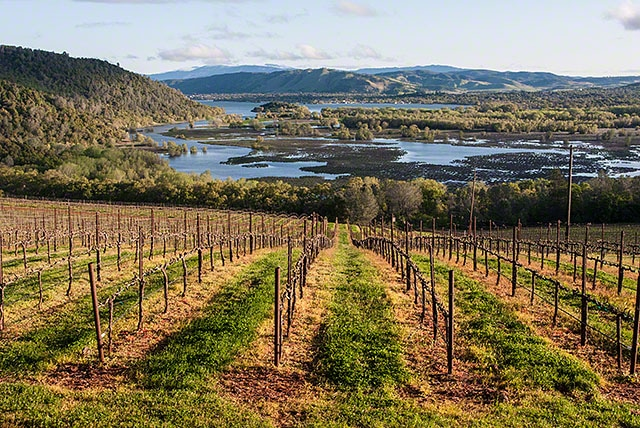 Lake County wine route