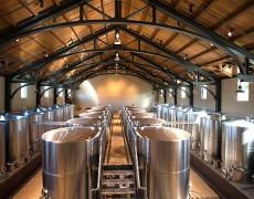 fermenting room at Trinchero Napa Valley