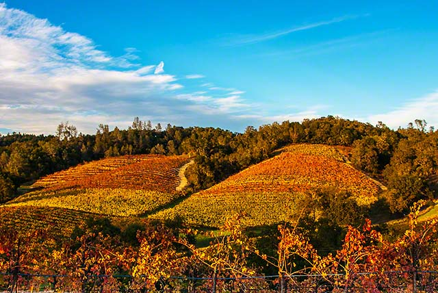 Fall colors in wine country now is the best time to visit for Best time to visit napa valley wine country